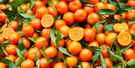 arancio horti delle marcigliana